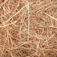 Varieties of Hay (REMOVE)